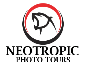 Neotropic Photo Tours